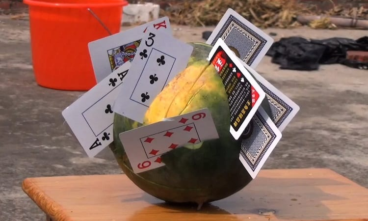 Cards In Watermelon